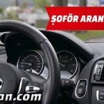 Avrupa Tecrübeli Tır Şoförü