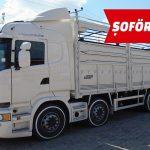 Şoför (Borusan Otomotiv)